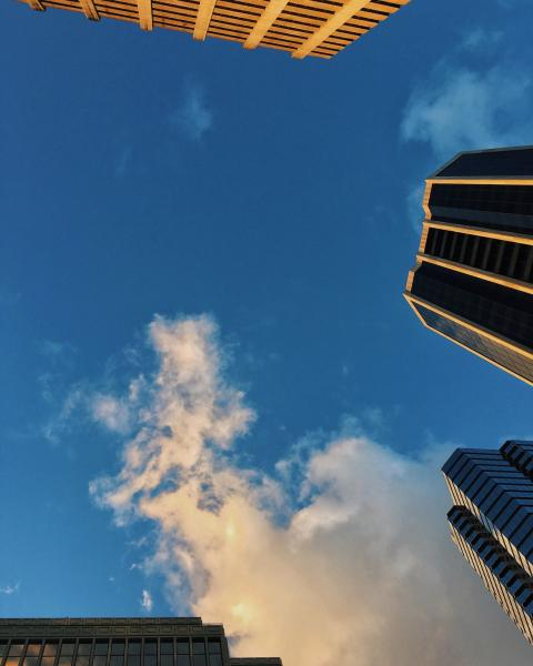Looking up in Downtown at Golden Hour