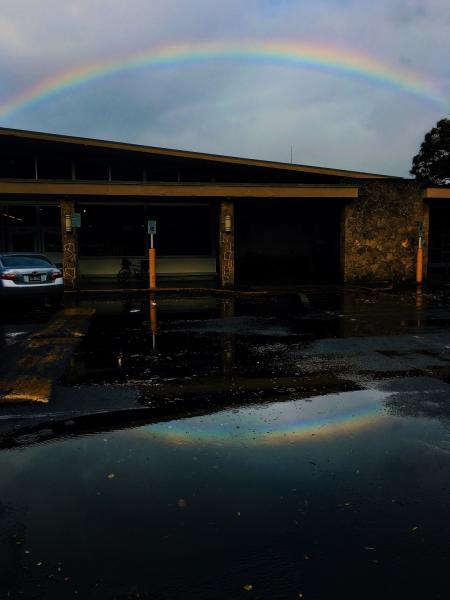 Reflections of Rainbow